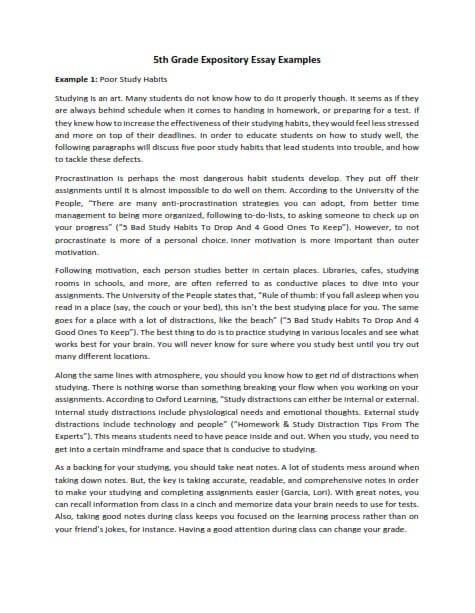 Sample expository essay 6th grade best blog writing service